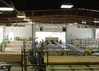 Green lumber being sorted in warehouse